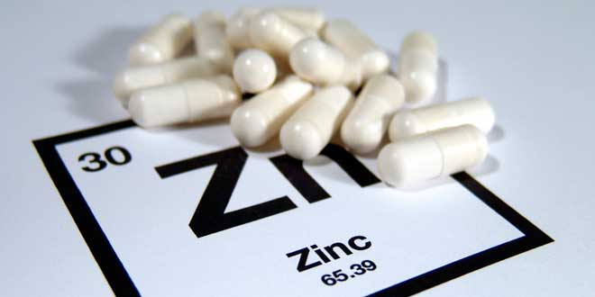 Zinc and testosterone increase