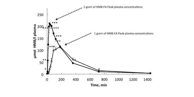 HMB plasma levels