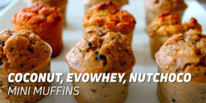 Evowhey Nutchoco mini Muffins