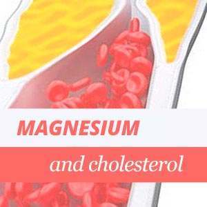 Magnesium and cholesterol