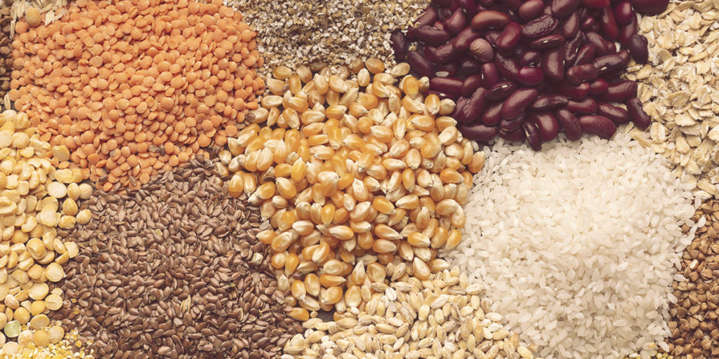 Different types of vegetable protein