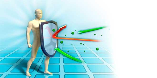 Glutamine enhances the immune system