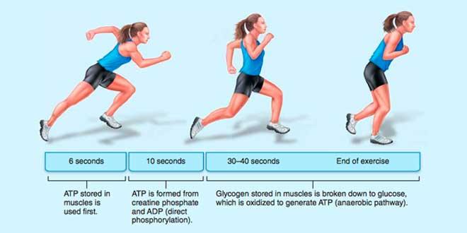 Exercise breakdown
