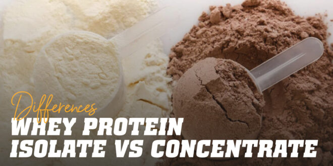Differences between Whey Protein Isolate and Concentrate