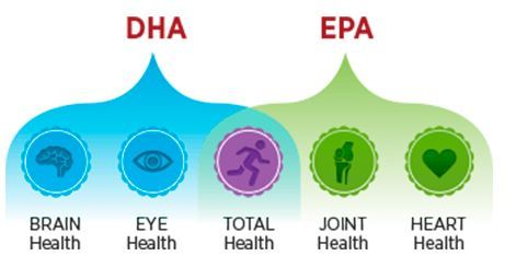 Functions of DHA and EPA