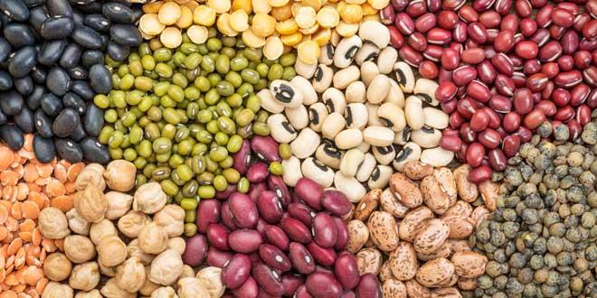 Legumes source of magnesium