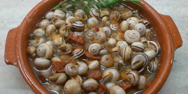 Snails and magnesium