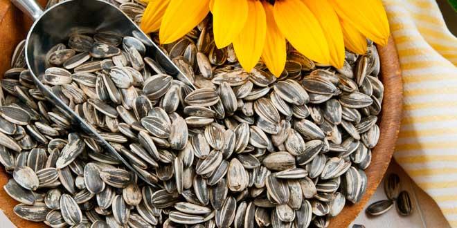 Sunflower seeds and magnesium