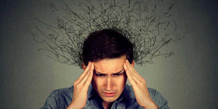 Reishi against stress