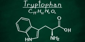Tryptophan chemical structure