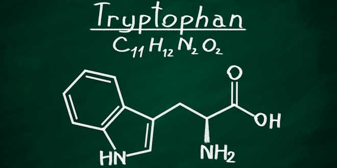 Tryptophan – All you need to know!