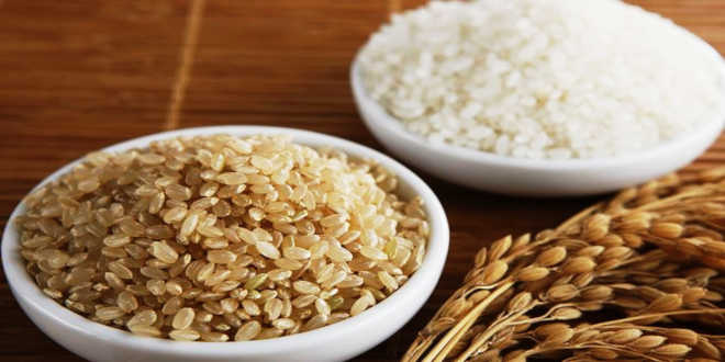 Rice Protein – A source of amino acids to control your weight