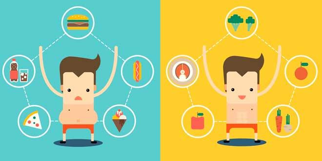 A healthy intestinal flora enhances weight loss