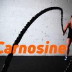 Carnosine and Sport