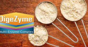 Digezyme multi enzyme complex