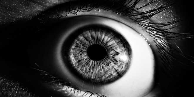 The importance of Lutein for our Sight