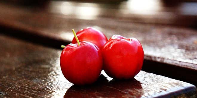 Benefits of acerola berries
