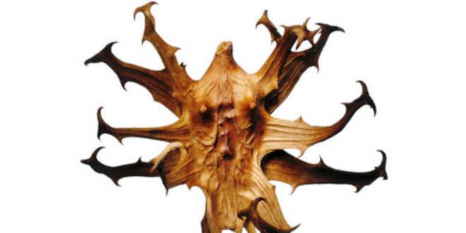 Devil's Claw Plant