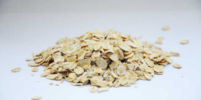 Oats – Learn about their Properties, Benefits and Types