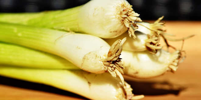Leeks are sources of prebiotics
