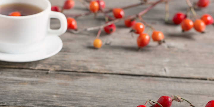 Rose hip infusion