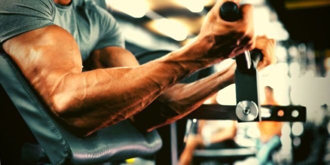 BCAA's or Branched Chain Amino Acids – Effects, Contraindications and Use