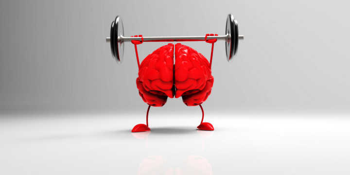 Coq10 improves the cognitive functions