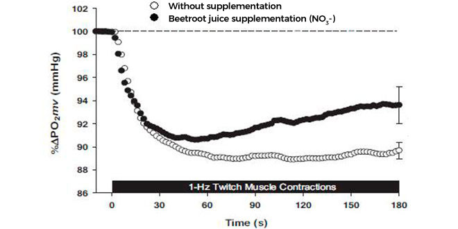 With or Without Beetroot supplementation
