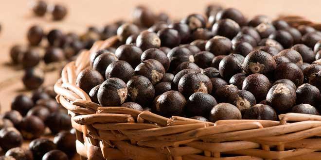 Basket of acai berries
