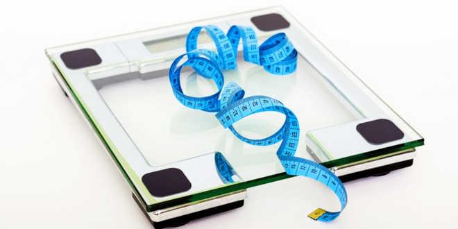 Artichoke supports weight loss