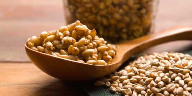 Wheat germ and folic acid