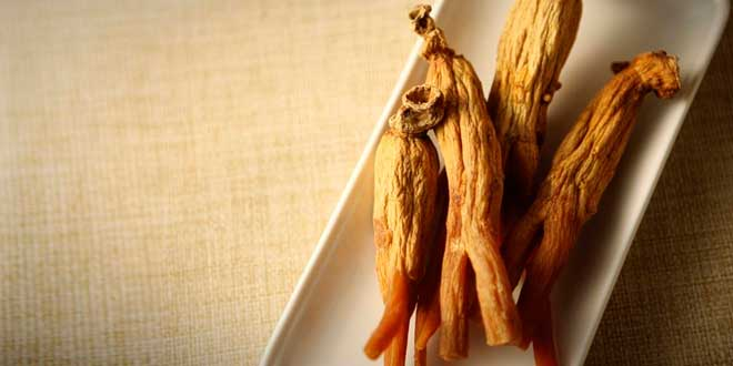 Siberian ginseng dry roots