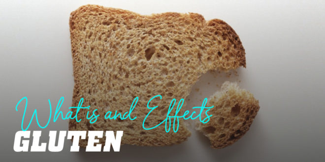 What is Gluten and what does it do to your body?