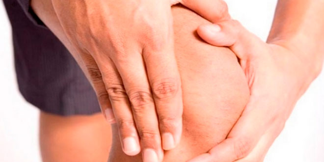 Chondroitin support for joint pain