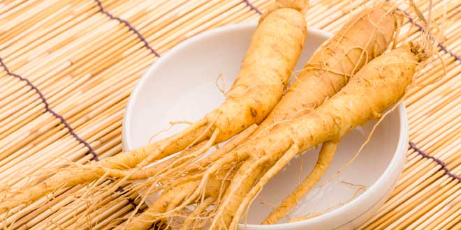 Siberian Ginseng – What is it, properties and benefits
