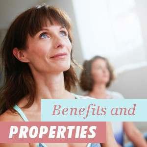 Benefits and Properties of Soy Isoflavones