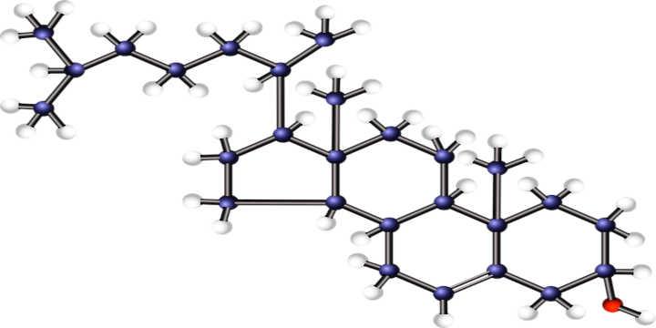 Branched cholesterol molecule