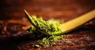 Benefits of Matcha Tea