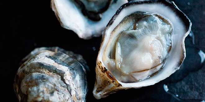 Oysters and inositol