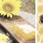 Properties of royal jelly