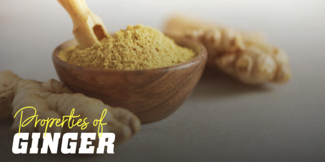 Ginger – Testosterone increase and benefits for health