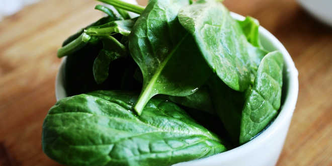 Spinach leaves in a bowl