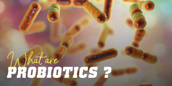 Probiotics – What are they, What are their benefits for Health