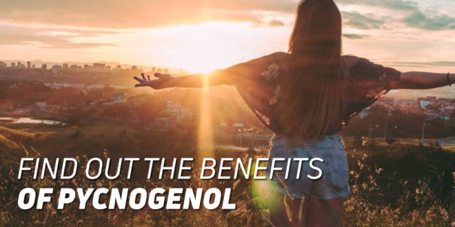 Benefits of Pycnogenol for our Health