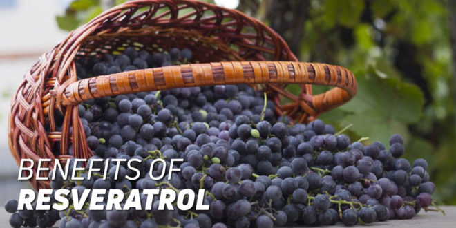 Resveratrol: Benefits for our health