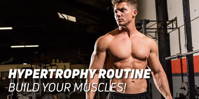Hypertrophy Routine: Build your Muscles