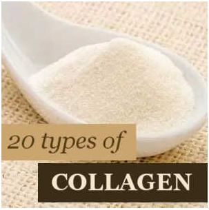 20 Types of Collagen