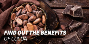 Benefits of Cocoa