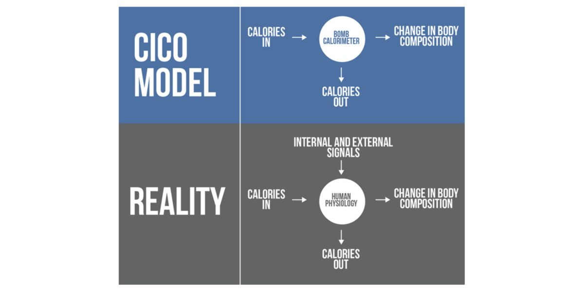 CICO model