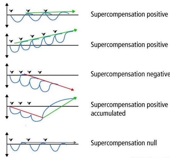 Types of supercompensation